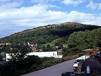 Bryn-Euryn