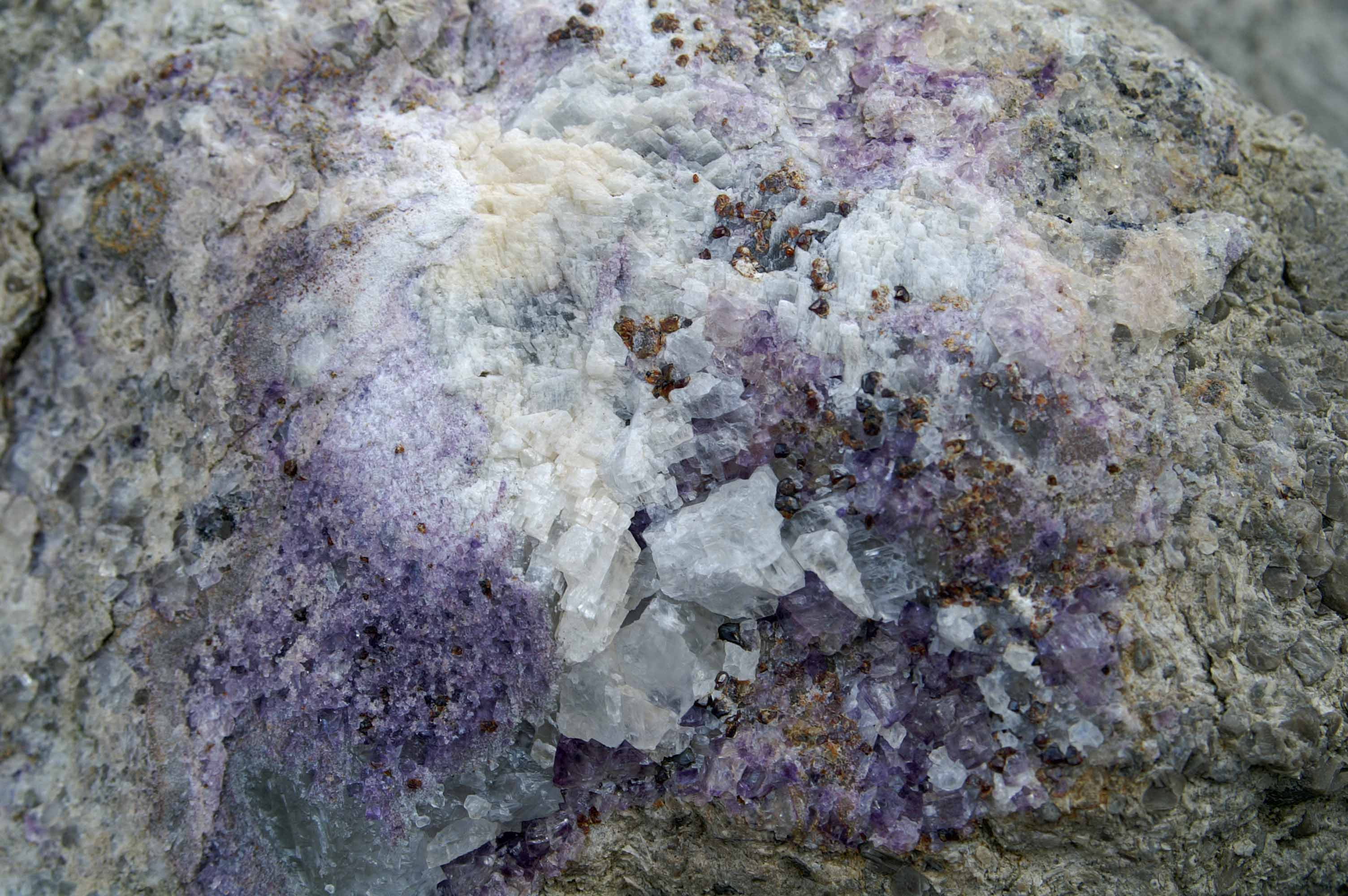crystals in limestone rock | everyday nature trails
