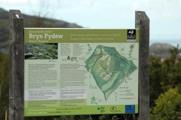 151008-Bryn Pydew (63)