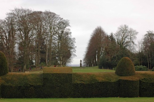 Part of the extensive clipped yew hedge with woodland beyond framing the breathtaking views