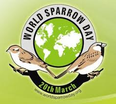 world sparrow day image