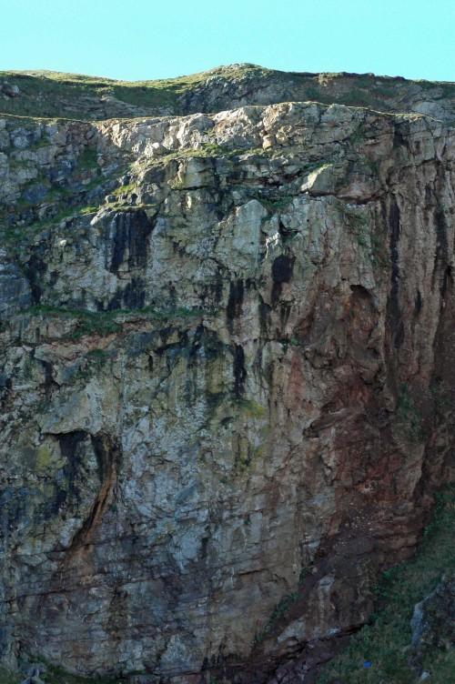 140206-Little Orme 27-Sunlit cliff