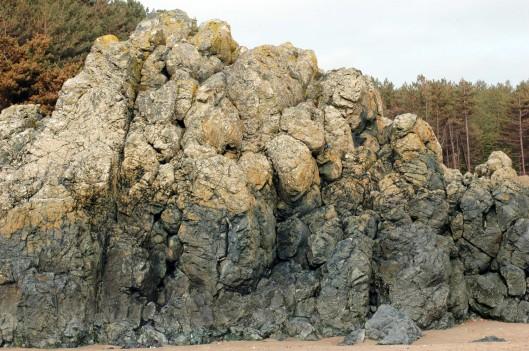 Pillow larva formation on beach