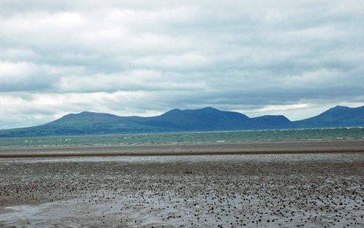 The view across Newborough beach to Snowdonia