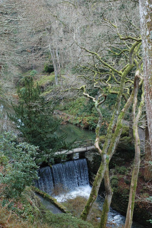 Looking down into the Dell, onto the waterfall