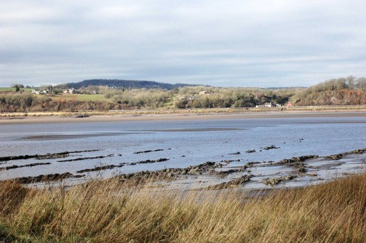 The River Severn at Purton at low tide