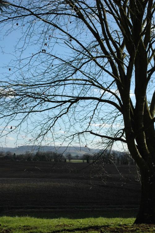 150218TGBR36-View to hills