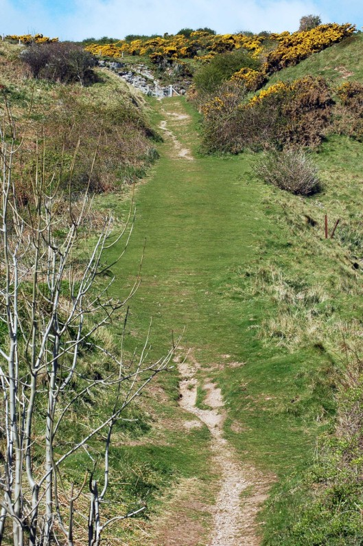 The Coast Path continues up steeply sloping 'Rabbit Hill'