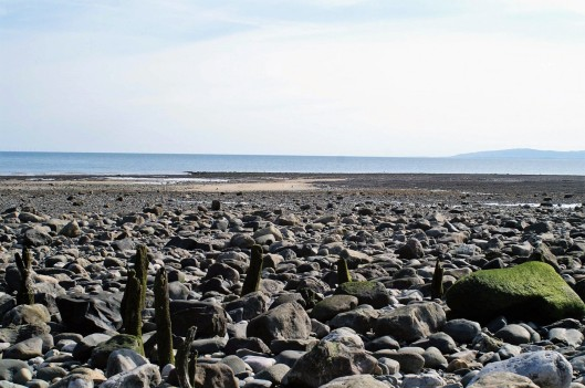 Rhos Point across the rock strewn shore to the mussel beds