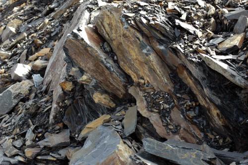 140826TGNW-Llechwedd Slate Mine (20)