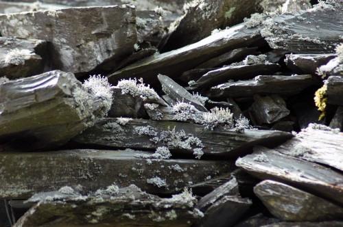 140826TGNW-Llechwedd Slate Mine (6)