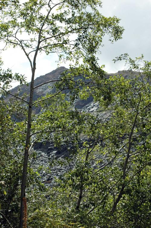 140826TGNW-Llechwedd Slate Mine (7)