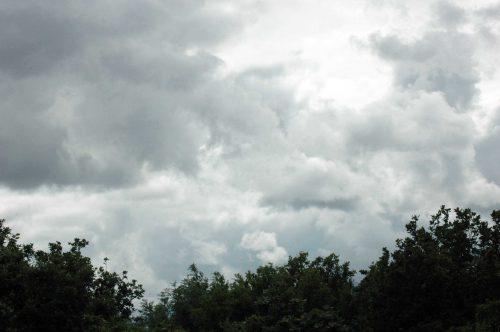 150712TG-Bryn Euryn-view (3)
