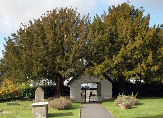 151022-Llangernyw-Church lych gate and yew trees 1