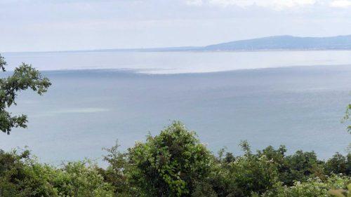 160805-Bryn Euryn (102)-Shaded sea