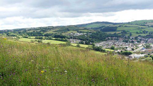 160805-Bryn Euryn (78a)-View