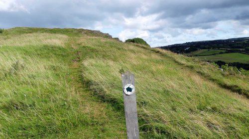 160805-Bryn Euryn (84a)-Summit Trail